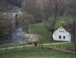 Ještě než sestoupíme k Volyňce, vidíme mohutnou Sudslavickou lípu v blízkosti zdejšího mlýna.