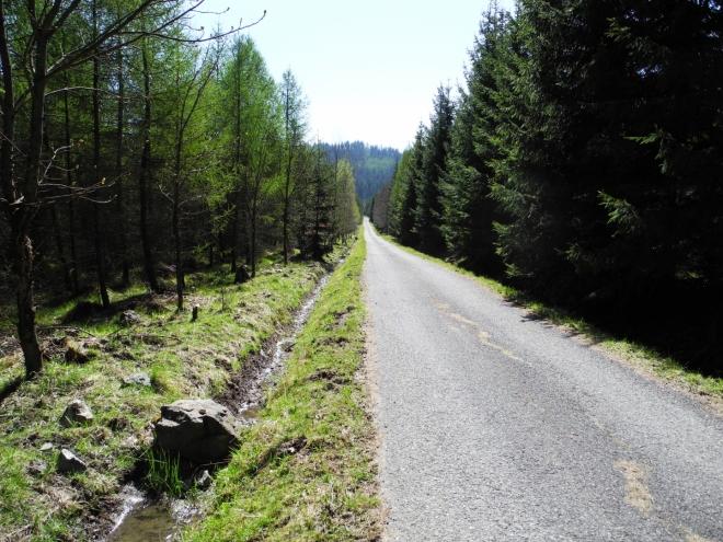 Bohužel asfaltové cesty převažují a nožky trpí.