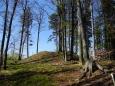 Pravěké hradiště Hengst, Kobylí hlava.