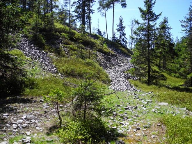 Hřebinec a suťová pole z malých kamenů.