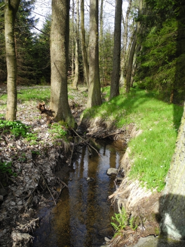 Pitnou vodu doplňujeme z tohoto potůčku, kde i snídáme. Obecně je pro mne překvapením, že zdrojů pitné vody, t.j. potoků, je zde velký nedostatek. Je to proto, že jdeme jen mírně zvlněnou krajinou, i když relativně ve velké nadmořské výšce.