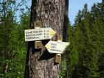 Po žluté příjemnou lesní cestou postupně klesáme do Podlesí. Příbram je na dohled...