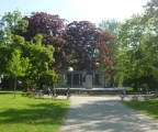 V parku - v pozadí pomník Jana Husa