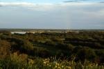 Delta Severní Dviny