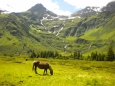 Údolí Sportgastein v červenci.