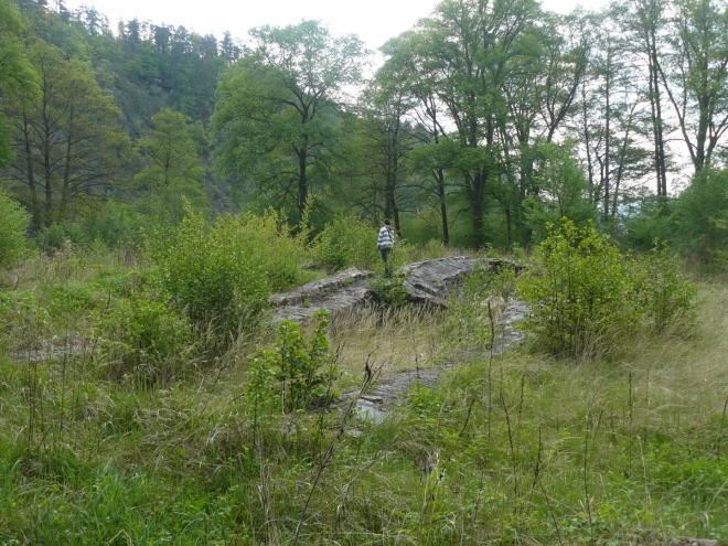 Zbytky kláštera vyčnívají z trávy.