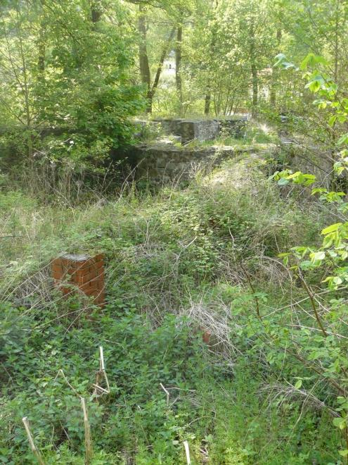 U ruin občas vyčuhují zděné komínky.