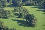 Pohled k loukám pod Suchým vrchem, kde se pase stádečko skotského skotu.