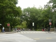 Vstup do Central parku. Po silnici naštěstí nemohou jezdit auta.