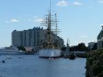 Loď Olympia a ponorka Becuna slouží jako muzeum. Okolo plují labutě.