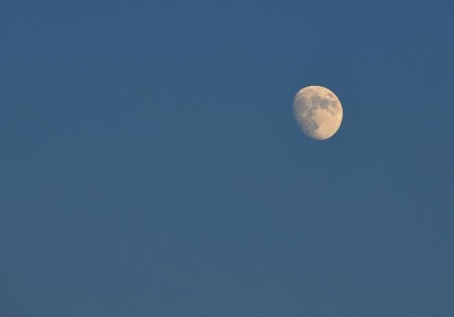 Měsíc kráčí k úplňku, ale brzy ho zahalí první mraky.