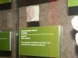 Triolobit z Česka