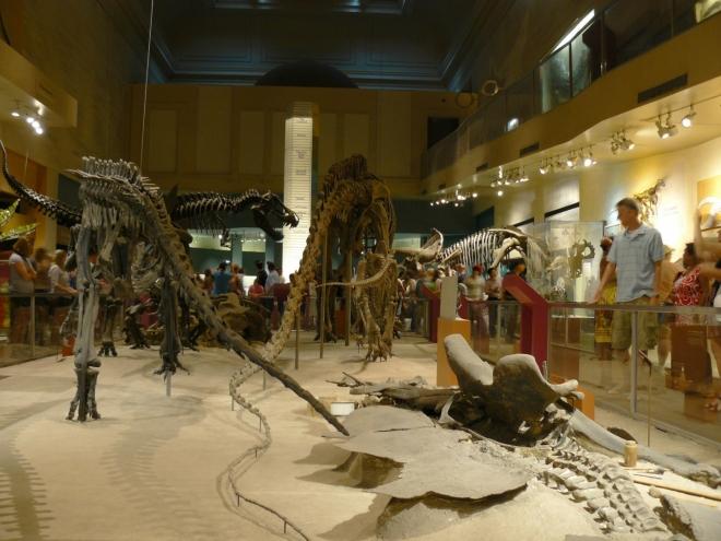 Jsme s sálu dinosaurů a mé srdce plesá (jako malý jsem se o ně zajímal).