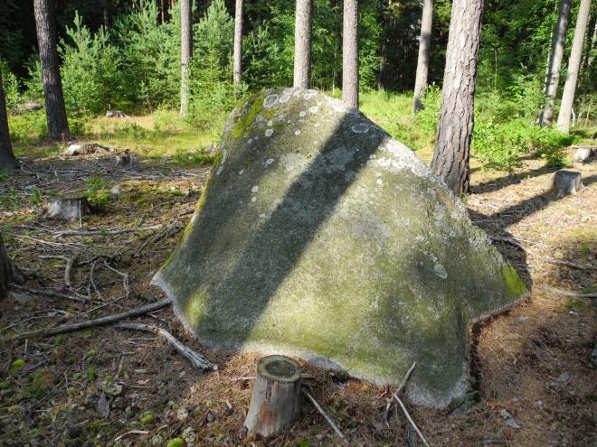 Jeden z mnoha kamenů u Medenice.