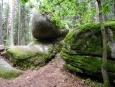 Naturpark Blockheide, viklan.