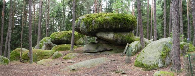 Naturpark Blockheide. Pilzstein.