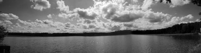 Svobodný rybník.