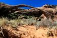 Utah, National Park Arches - Landscape Arch. Tady se nám nevyplatila kázeň. Fotografie je pořízena z vytýčeného chodníku. Kolegové, kteří na ohraničení nedbali, se dostali podstatně blíž a na fotografii mají oblouk proti výrazně větší ploše oblohy. Snímek pak vypadá nesrovnatelně lépe.