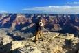 Arizona, Grand Canyon - a že bylo co fotit