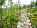 Stezka na vrchol Siebensteinkopf je parádně upravená a kontrast s okolím je značný. Tady se kolem začínají vzmáhat první pionýrské stromky. Především jeřabiny a břízy.
