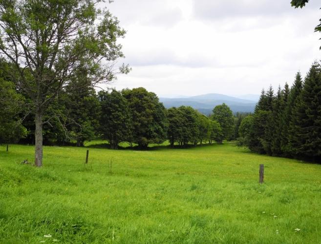 Pohled z Bučiny ke Knížecím Pláním.