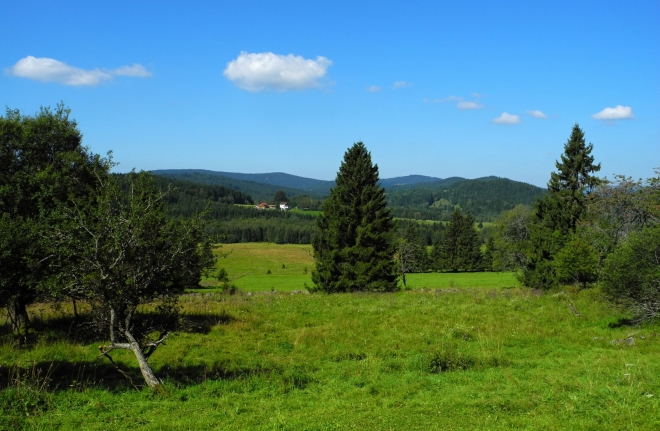 Dolní Cazov, pohled do Německa.