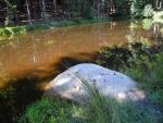 Mokřadní vodní plocha.