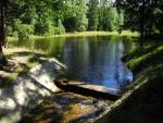 Po cervené TZ stoupáme kolem dalšího lesního rybníku k Terezínu.