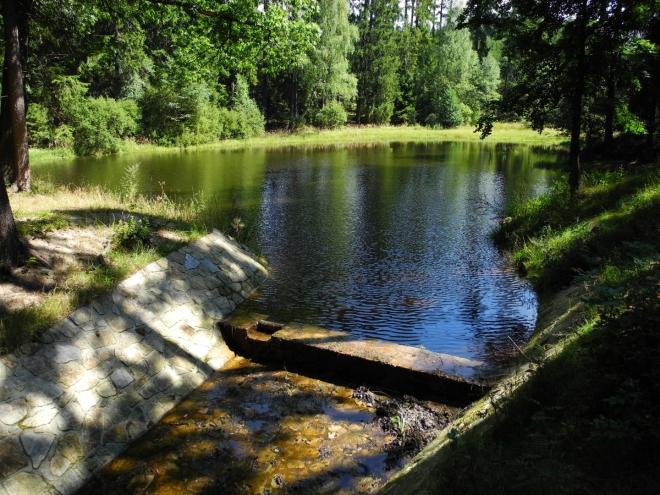 Po červené TZ stoupáme kolem dalšího lesního rybníku k Terezínu.