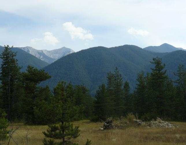 Hory se blíží a dostávají zřetelné obrysy.