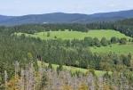 Louky vybíhající od Žlíbského vrchu se jmenují Samoty.