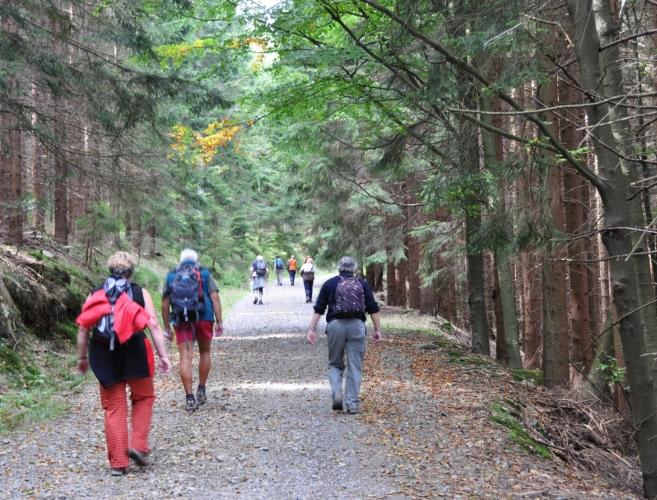 Stálé stoupání nám občas okoření okolní skály a kameny, a také podzimně se zabarvující bučiny.