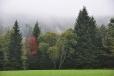 Po propršené noci se po okolních kopcích všude válí husté mlhy. Je radost fotit...