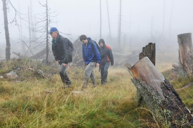 Na hlavní vrchol  je to kousek. Všude kolem jsou popadané stromy, stát zůstalo jen několik suchých pahýlů.