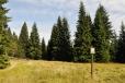 PR Prameniště má čtyři části, které chrání i rašeliniště Šmauzy, prameniště Křemelné.