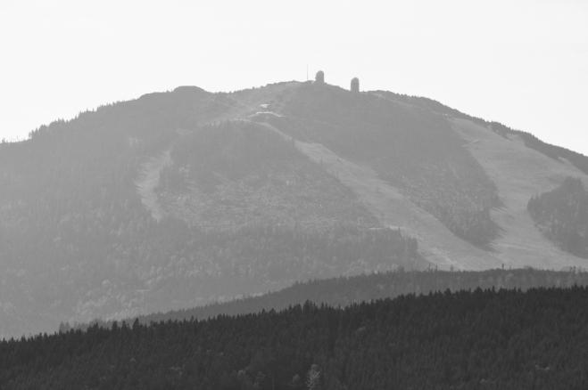 BW Velký Javor (Gross Arber 1 456m).