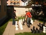 Máte rádi šachy?
