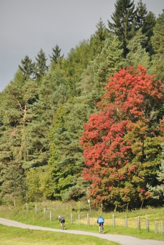 Cyklotrasa zde vede do Černé v Pošumaví, která je kousek pod kopcem. V lese je však ukryta jedna velká zvláštnost. Muckovské vápencové lomy. Jakékoli směrovky ale chybí a místo je oploceno.