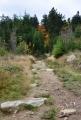 Trek k Vítkovu Kámenu začínáme u Uhliště, kde je parkoviště. Dojet se však dá až pod hrad.