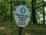 rezervace dravců je všude na vrcholech Börszöny