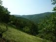 údolí Černého potoka