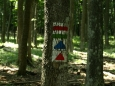 tady se setkávají různé trasy na vrchol