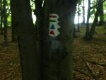zdejší značení je barevné jen na stromech, na mapách už bohužel ne !tam je všude jen červená značka