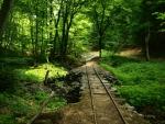 mostky podemlela, koryto potoka zanesla kamením a bahnem