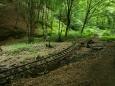 jenže sem už asi vláčky pro dřevo a pro turisty asi nikdy nepojedou