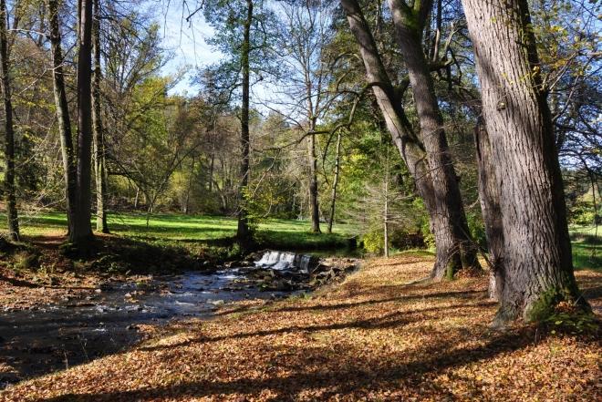 Polovina října je to pravé období pro hezké podzimní fotky. Stromy již schazují listí a příroda hýří barvami.