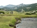 Krásné rovné údolí s měkkou travičkou.
