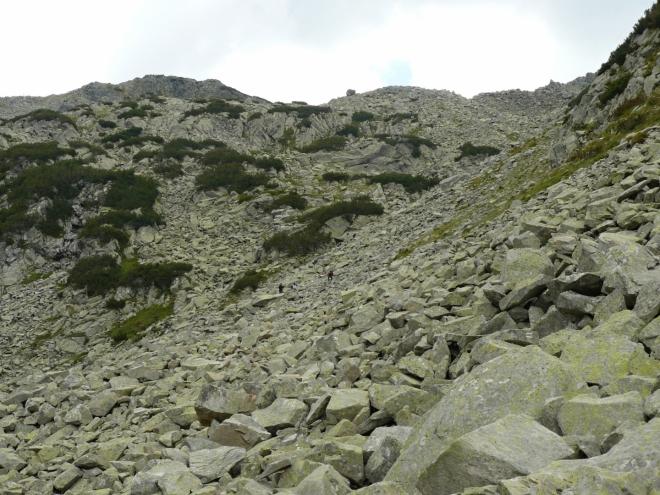 Nepěkná a neupravená cesta na hřeben vede skrz kamenné moře. Zde si každý musí hrát na kamzíka a skákat z kamene na kámen.