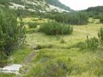 Rovinaté údolí u Popova jezera se mi líbí