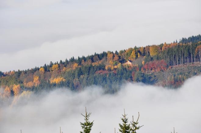 Paleta podzimních barev.